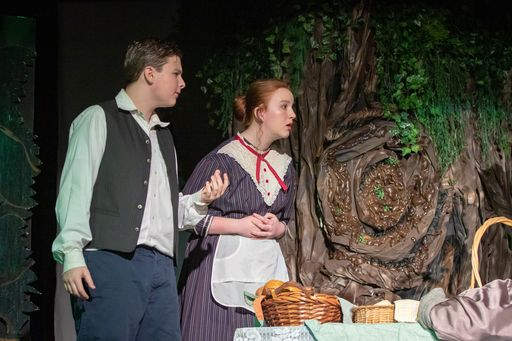 Princeton Academy Presents Into the Woods JR.